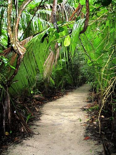 Costa Rica Park